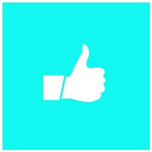 Empfehlung Ecopatent Pippi-Fix